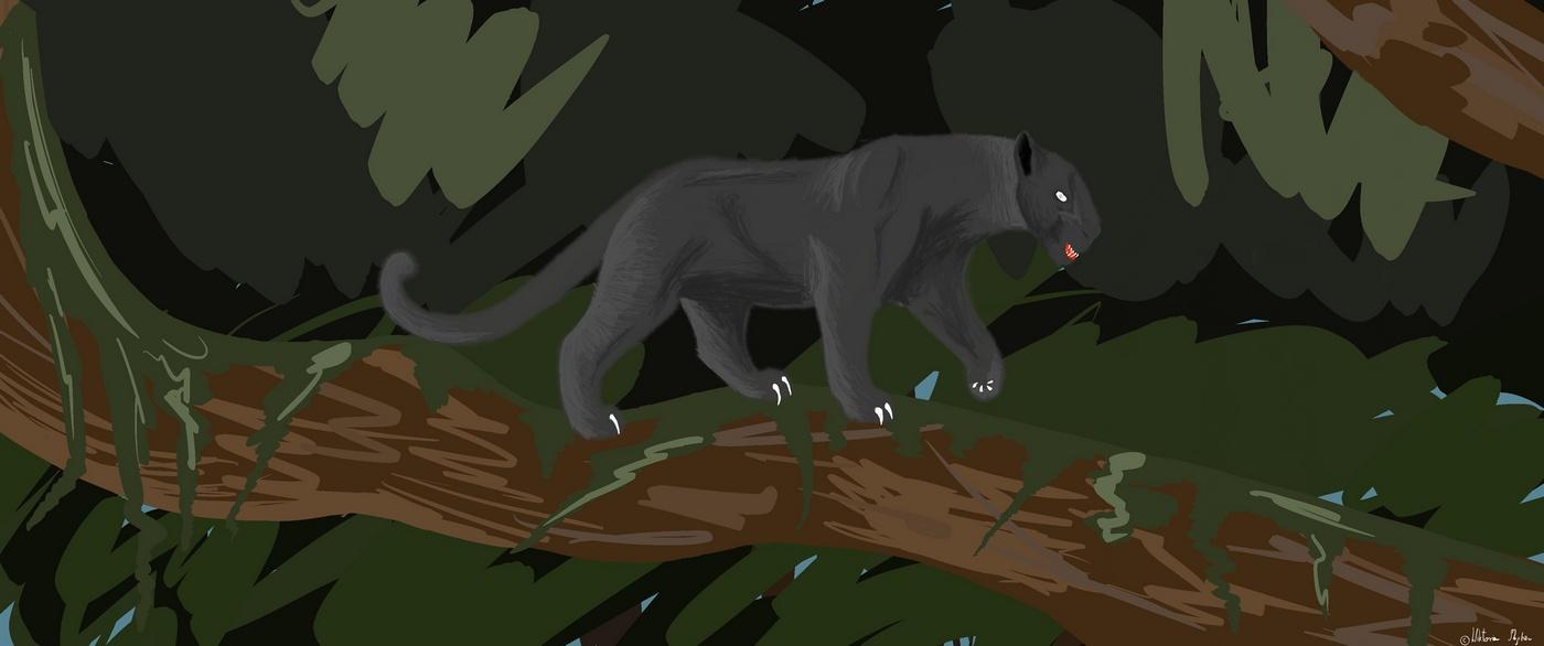 Koty Wiktorii